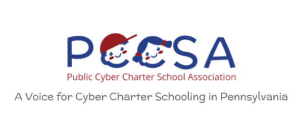 Survey Shows Parent Support for Cyber School Option